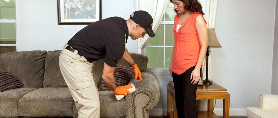 Barberton, OH carpet upholstery cleaning
